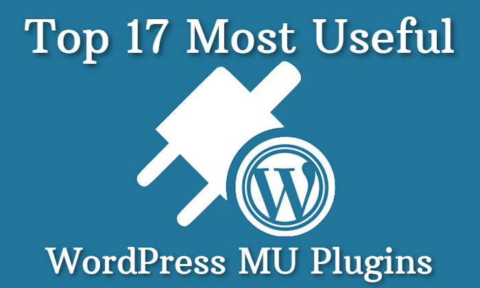 Top 17 Most Useful WordPress MU Plugins